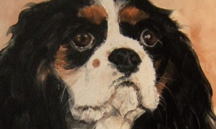 CAVALIER KING CHARLES . huile couteau