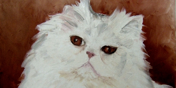 CHAT BLANC . huile couteau