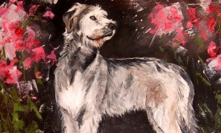 IRISH WOLFHOUND . huile couteau