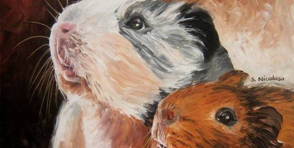 HAMSTERS . huile couteau