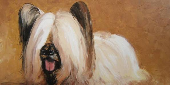 SKYE TERRIER . huile couteau